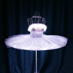 TC-0168 Led Ballet Tutu Skirt Dress